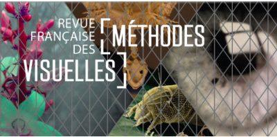 Appel à articles pour la Revue Française des Méthodes Visuelles N° 7